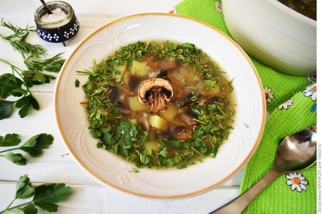 Томленый суп с гречкой и грибами