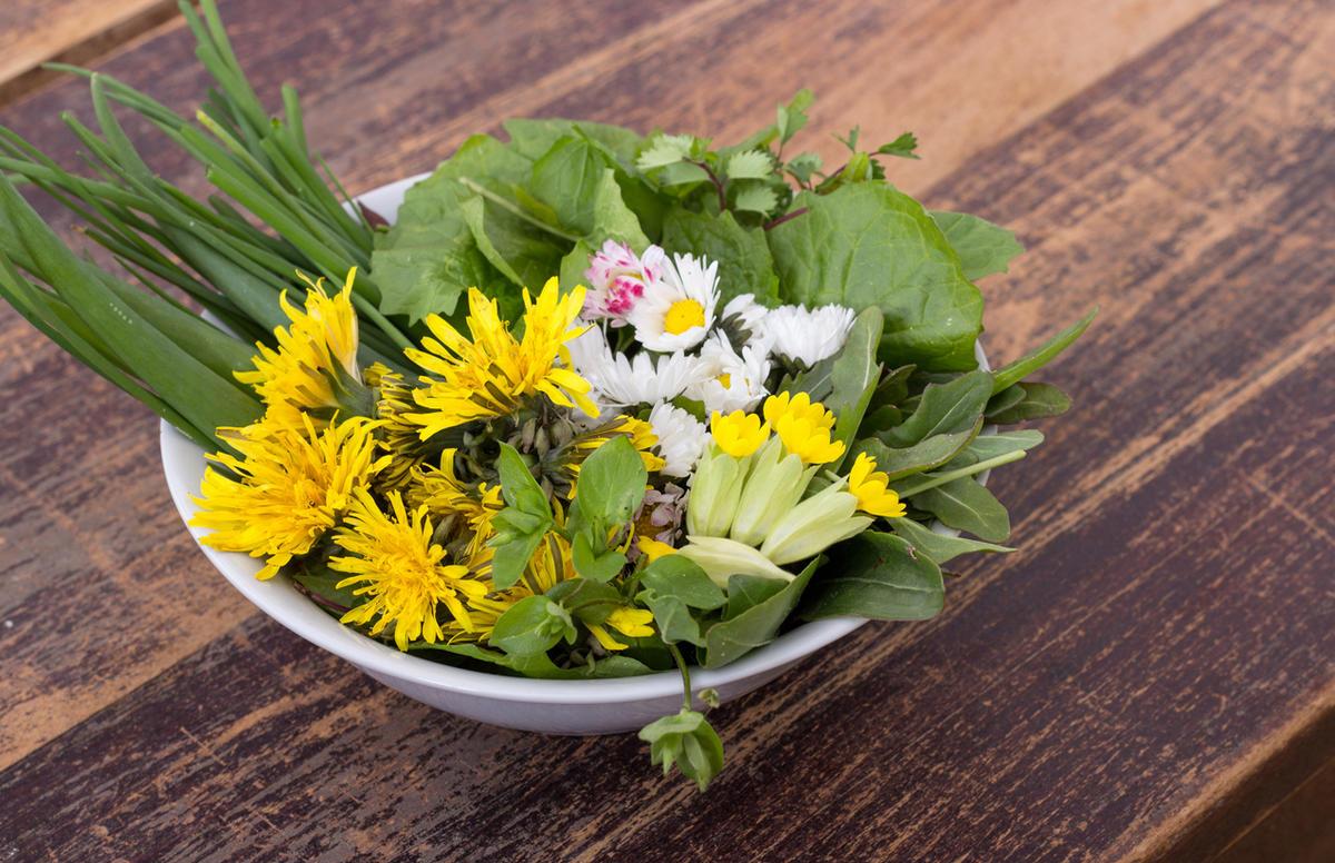 Сорняки на закуску: неожиданные рецепты полезных блюд