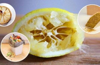 Выжат, но не сломлен: 10 причин не выбрасывать использованный лимон