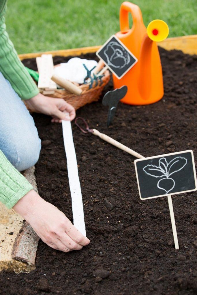 Что предпринять весной для знатного урожая моркови осенью