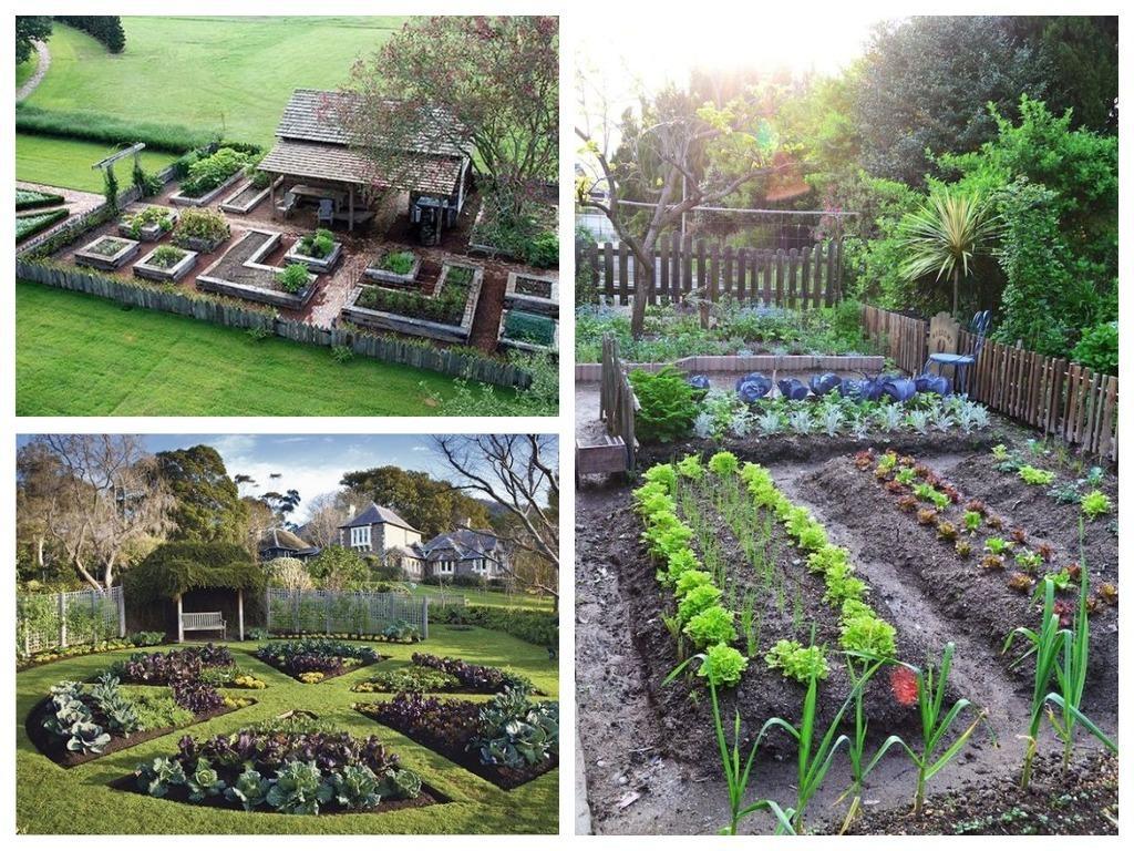 Красивые грядки, красивый огород: идеи для ценителей прекрасного