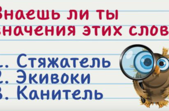 Коварные словечки, значение которых знают только умные люди