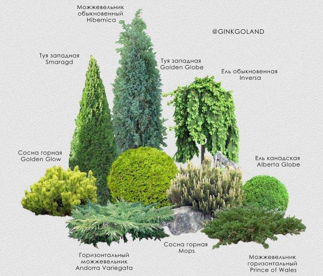Ландшафтный дизайн только с любовью – 8 идей садовых композиций
