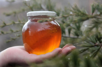 Мед в народной медицине. Рецепты для здоровья.