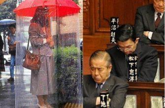 17 вещей и явлений из Японии, которые для европейцев точно будут в диковинку