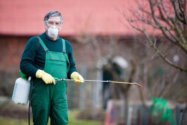 Искореняющая обработка сада осенью: что это и зачем она проводится