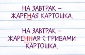 Подсказки для тех, кто уже не помнит ни одного правила русского языка