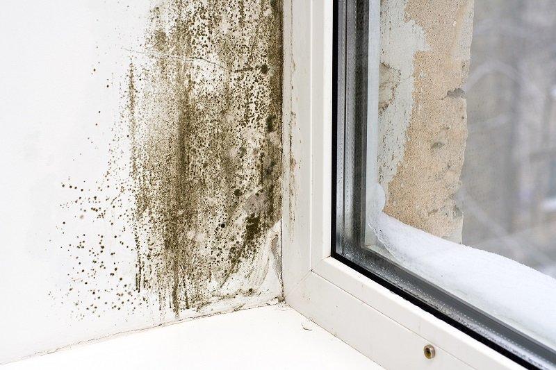 Почему мокнут откосы пластиковых окон