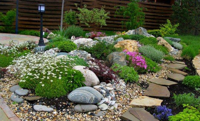 Как создать сад камней своими руками – 5 оригинальных идей