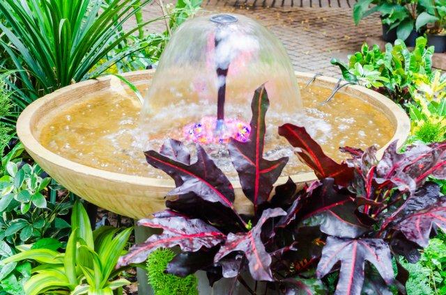 10 простых идей, которые помогут создать сад мечты