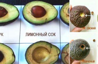 Продукт, который заменил мне мясо, рыбу и салат! Как правильно есть и хранить авокадо.