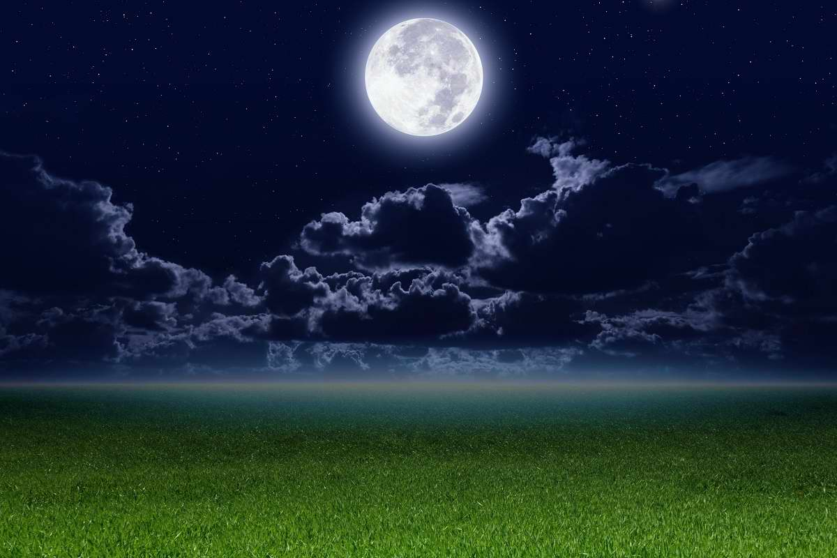 Лунный посевной календарь садовода-огородника — 2021