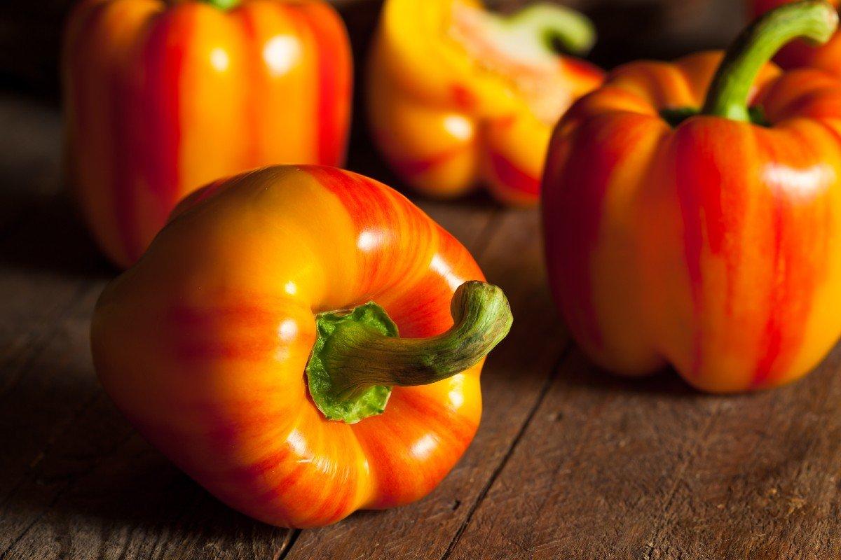 Метод «горячей посадки» болгарского перца