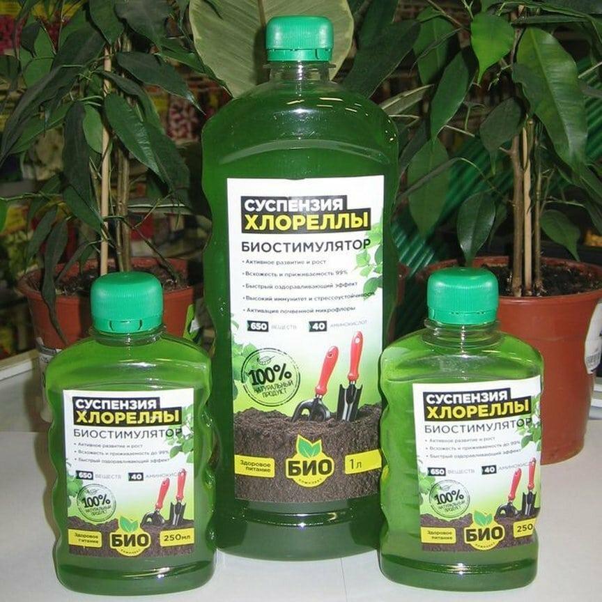 Удобрение для всех растений практически даром. Рецепт опытного садовода.