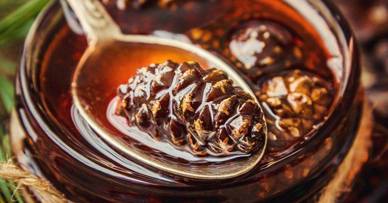 Варенье из шишек сосны «Хитрый знахарь» с сахаром