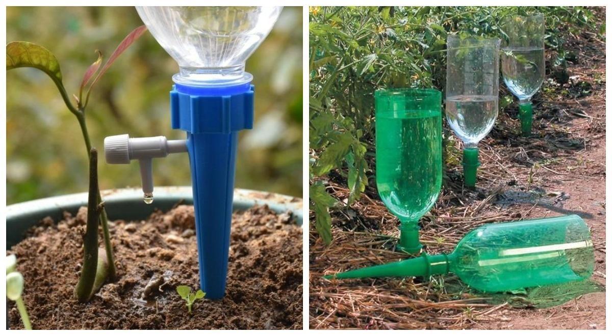Пейте вдоволь, растюшечки: 7 способов упростить полив