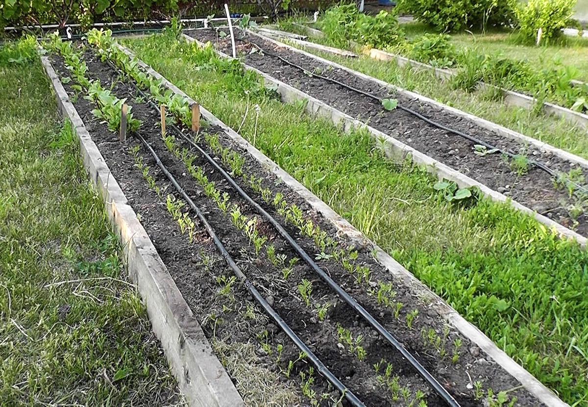 Самотечная система полива огорода и теплицы своими руками. Видео, фото.