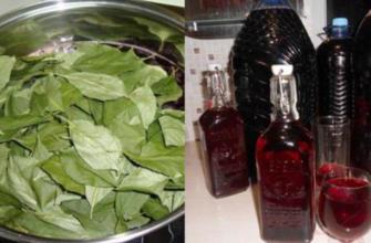 Ароматная наливка «100 листьев» по проверенному рецепту