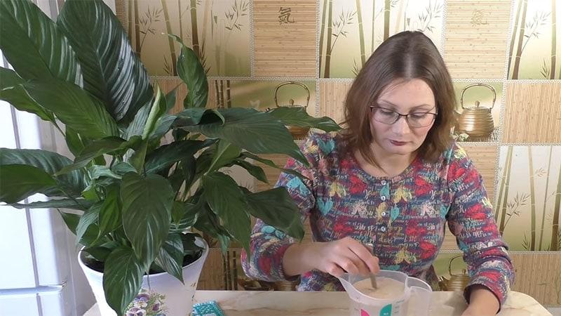 Бесплатная подкормка 2 раза в год обеспечит бешеный рост комнатных растений