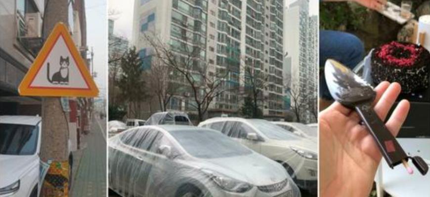 Южная Корея: совершенно другой мир, и вот несколько фотографий, которые доказывают это
